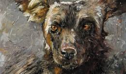 Wilddogs-Study-500